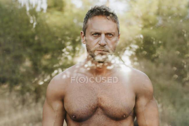 Hombre guapo sin camisa contra los árboles en el bosque visto a través del vidrio - foto de stock