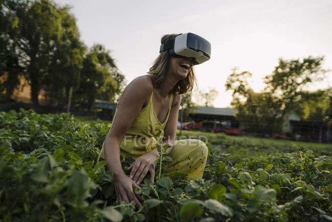 Laughing young woman wearing VR goggles in a vegetable patch in the countryside — Stock Photo