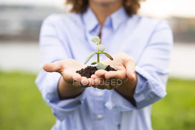Gros plan sur les femmes chefs d'entreprise exploitant une plantation — Photo de stock