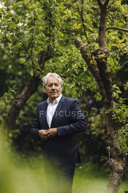 Selbstbewusster Senior-Geschäftsmann steht an einem Baum in einem ländlichen Garten — Stockfoto