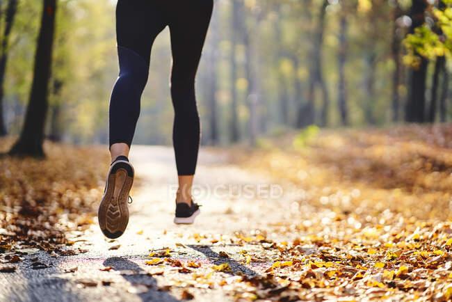 Молода жінка біжить осіннім лісом. — стокове фото