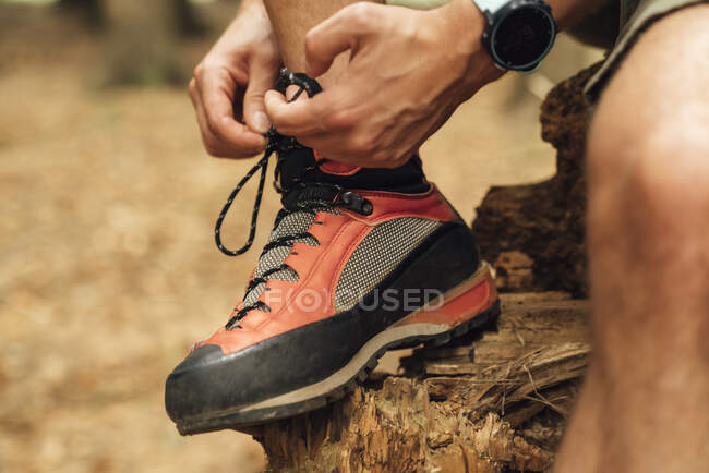 Close-up of mid adult man tying shoelace on wood in forest — Stock Photo