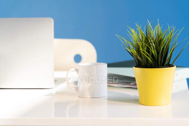 Escritorio de oficina con portátil, taza blanca y maceta amarilla - foto de stock