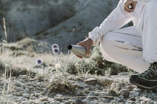 Planta de riego del hombre con termo en un paisaje árido - foto de stock