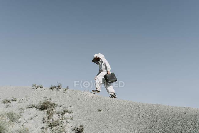 Людина з портфелем у бджолиному вбранні йде в сухий апокаліптичний пейзаж. — стокове фото
