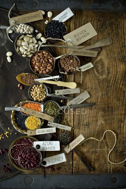 Лист для випічки русів і різні види бобів і сочевиці. — стокове фото