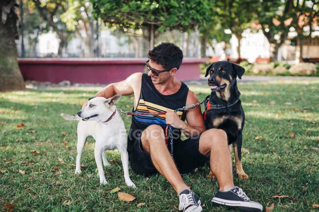 Hombre usando gafas de sol con perros sentados en tierra herbácea en el parque - foto de stock