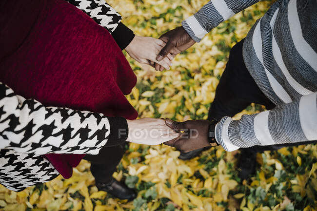 Multi ethnic couple holding hands while standing in park during autumn — Stock Photo