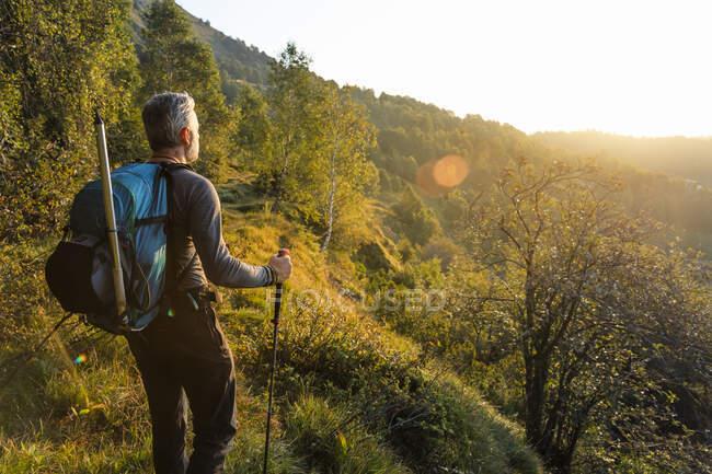 Homem maduro com mochila em pé na montanha na floresta durante o nascer do sol, Orobie, Lecco, Itália — Fotografia de Stock