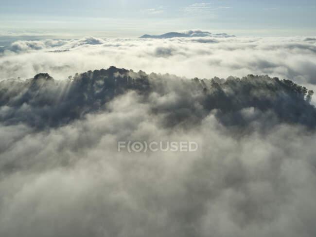 Veduta aerea di basse nuvole che avvolgono colline boscose — Foto stock