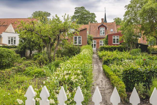 Dinamarca, Región del Sur de Dinamarca, Aeroskobing, Flores floreciendo en el patio delantero de la casa tradicional danesa - foto de stock