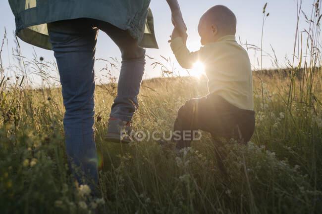 Ragazzo carino che tiene la mano della madre mentre cammina sul campo durante la giornata di sole — Foto stock