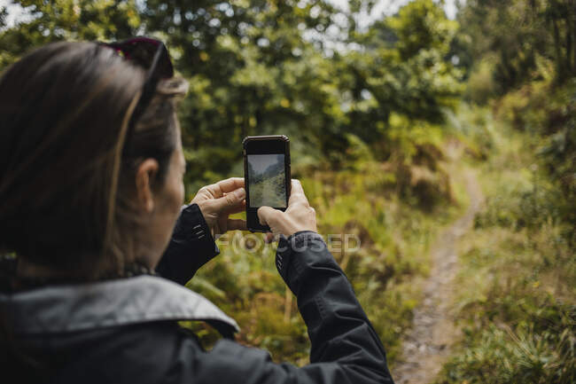Rear view of woman in raincoat photographing rainbow at forest — Stock Photo