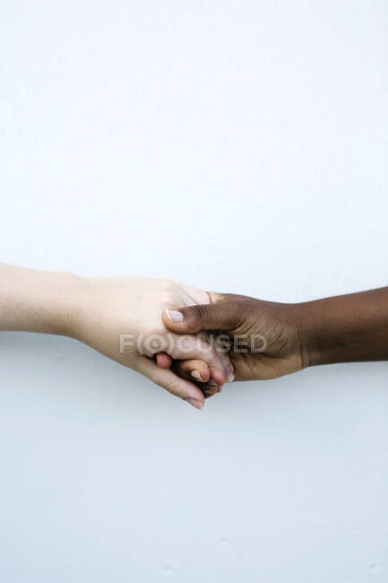Friends shaking hand against white wall — Stock Photo