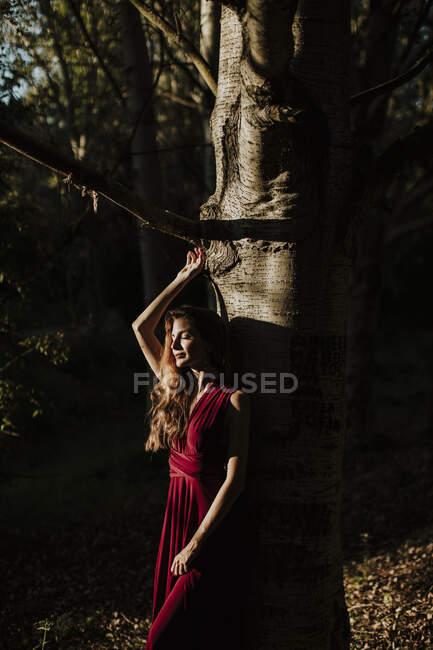 Mulher sorridente com braços levantados em pé contra tronco de árvore na floresta — Fotografia de Stock