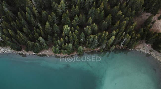 Drone del lago Ibon Del Plan vicino alla foresta durante la stagione autunnale, Huseca, Spagna — Foto stock