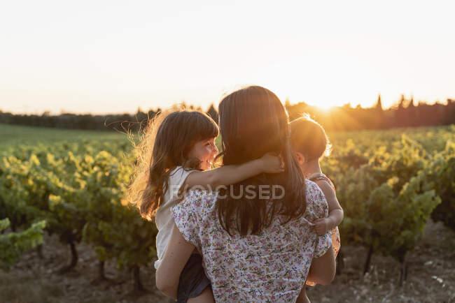 Madre e figlie in un vigneto al tramonto in Provenza, Francia — Foto stock