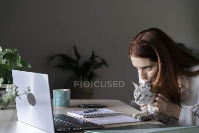 Молода жінка цілує кота під час роботи на ноутбуці. — стокове фото