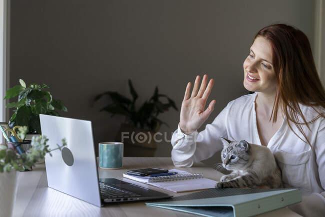 Молода жінка сидить з котом на колінах, працюючи вдома на ноутбуку. — стокове фото