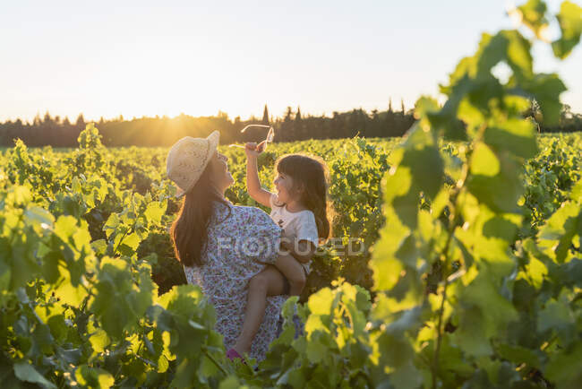 Madre sosteniendo a su hija en un viñedo al atardecer en Provenza, Francia - foto de stock
