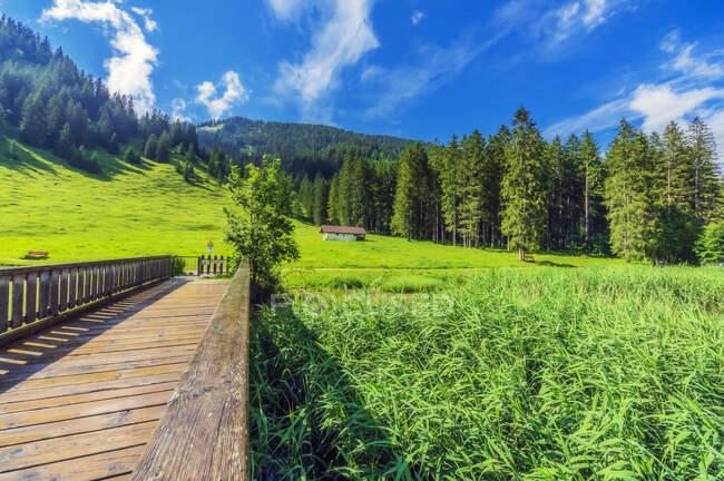 Piccolo ponte di legno a Tannheimer Tal — Foto stock