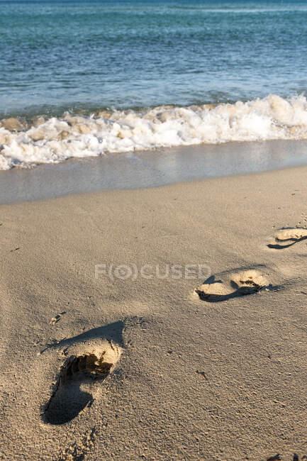 Impronte nella sabbia della spiaggia — Foto stock