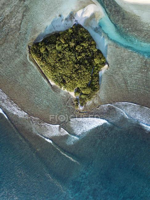 Maldive, Atollo di Kaafu, Veduta aerea di un piccolo boschetto sull'isola di Huraa — Foto stock