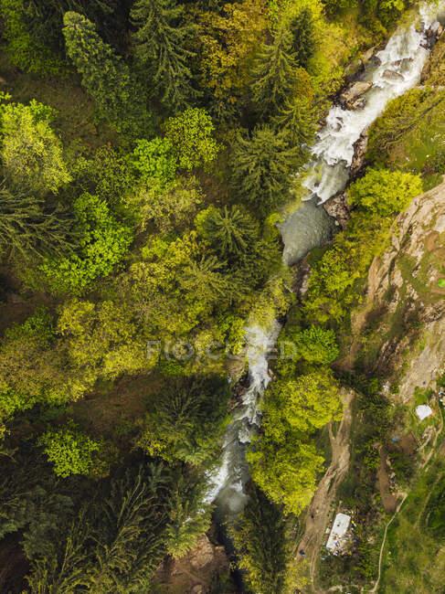 Vista de drones de árboles verdes creciendo a lo largo del río Parvati, India - foto de stock
