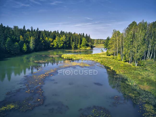 Vista idílica del río en medio de árboles contra el cielo azul - foto de stock