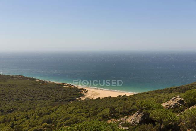 Costa forestale del Mar Mediterraneo in estate — Foto stock