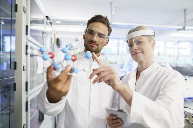 Femme scientifique souriante touchant la structure moléculaire tenue par un jeune collègue masculin au laboratoire — Photo de stock