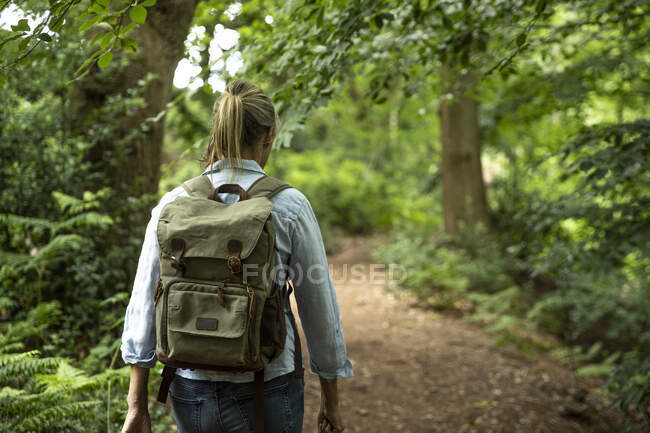 Senior woman walking with backpack in forest — Stock Photo