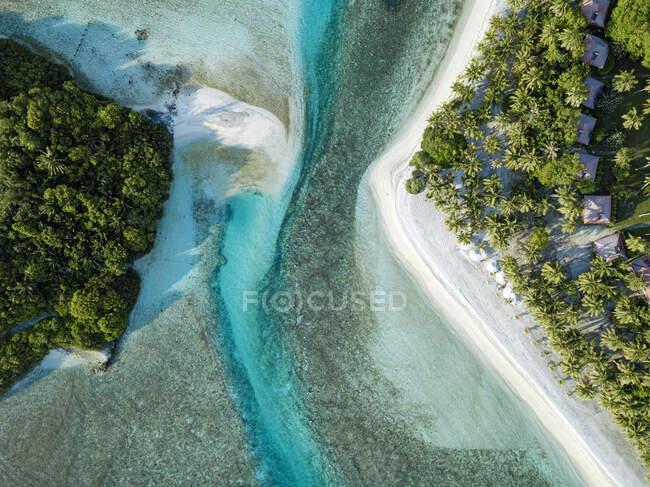 Maldive, atollo di Kaafu, Veduta aerea degli alberi che crescono lungo la riva dell'isola di Huraa — Foto stock
