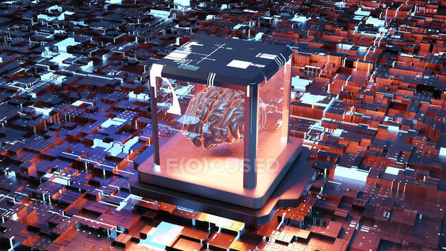 Illustration of three dimensional human brain in transparent container on circuit board — Stock Photo