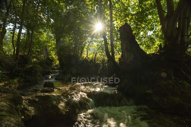 Cascada en medio de rocas en un día soleado en el bosque,, Swabian Alb, Alemania - foto de stock