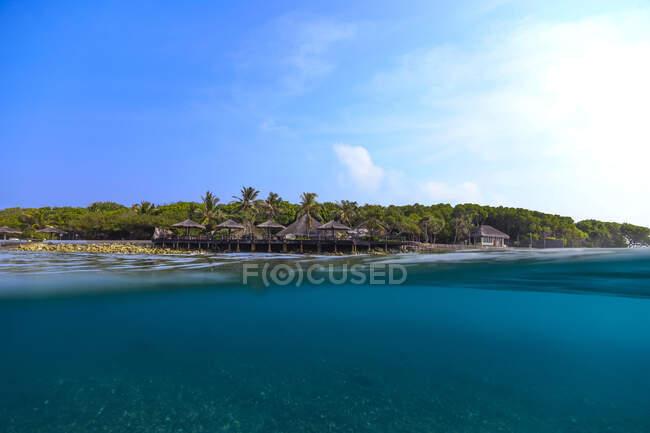 Maldive, atollo di Kaafu, palme lungo la costa dell'isola di Himmafushi — Foto stock