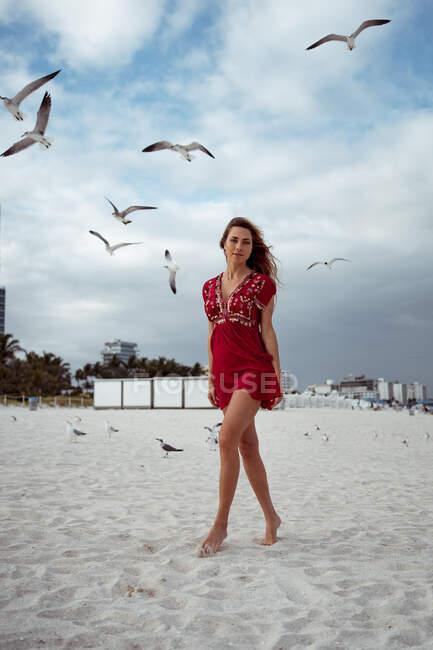 Mulher bonita de pé enquanto gaivota voando contra o céu na praia — Fotografia de Stock