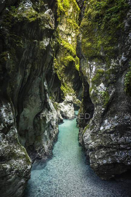 Ущелье с бирюзовой рекой — стоковое фото