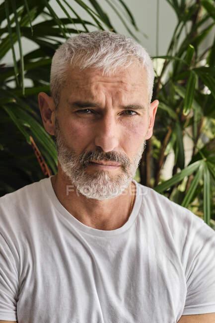Bonito homem maduro com cabelos brancos e barba em casa — Fotografia de Stock