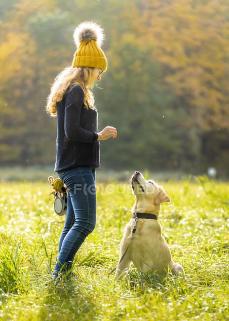 Mujer joven de pie con Labrador Retriever en el parque - foto de stock