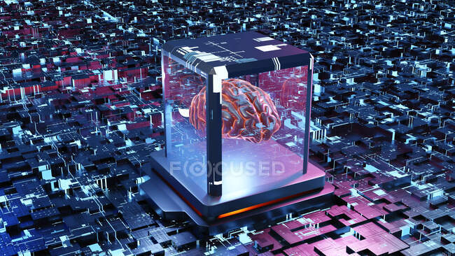 Illustration of three dimensional brain on circuit board — Stock Photo