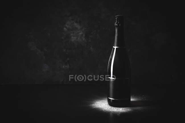 Estúdio de garrafa preta de champanhe com etiqueta em branco — Fotografia de Stock