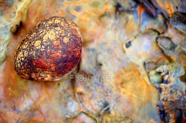 Superficie ácida en la zona del río Tinto, España - foto de stock