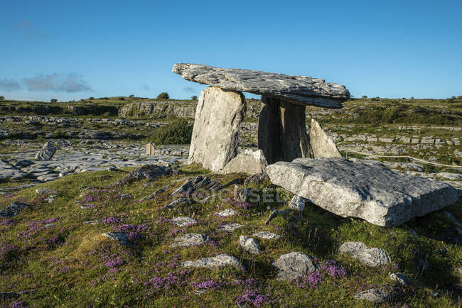 Poulnabrone dolmen on land against clear blue sky during sunny day, Clare, Ireland - foto de stock