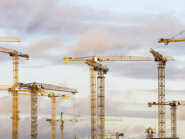 У сутінках над небом стоять будівельні крани. — стокове фото