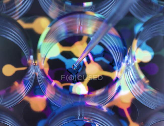 Imagen conceptual para ilustrar la biotecnología, fórmula química de pipeteo científico en placa de múltiples pozos durante un experimento - foto de stock