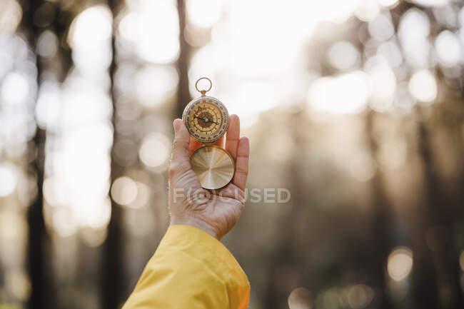Mujer sosteniendo brújula en bosque - foto de stock