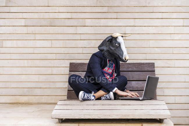 Жіночий біржовий брокер у масці бика працює на ноутбуці, сидячи на лавці біля стіни. — стокове фото