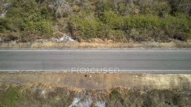 Vista aérea de una carretera de alquitrán y bosque a ambos lados, área de Cabo Ledo, Angola - foto de stock
