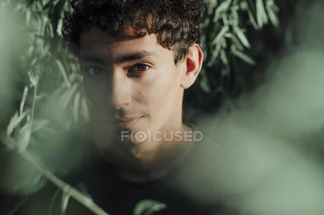 Retrato de primer plano del hombre guapo con ojos marrones contra las plantas en el parque - foto de stock